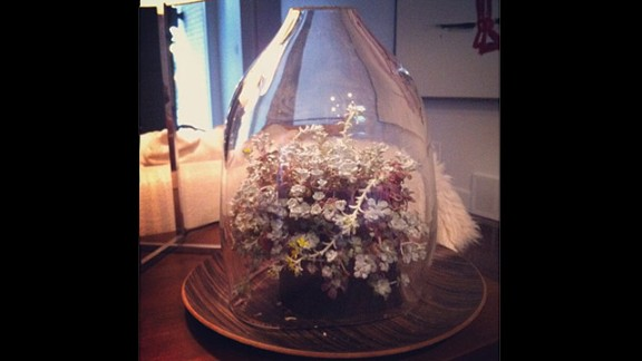 Hamburg-Hamby says a friend made this bell jar display for her.