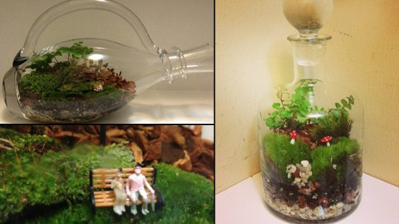 Instagram user @terrariumrich shared photos of some of his bottled creations.