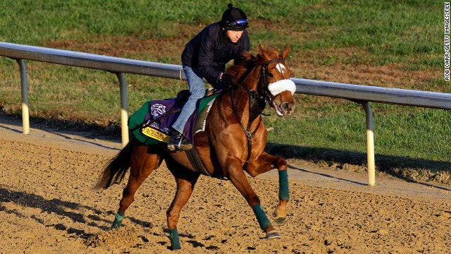 Pachattack, trained by a stable owned by Gerard Butler, came third in a prestigious race at the Breeders' Cup