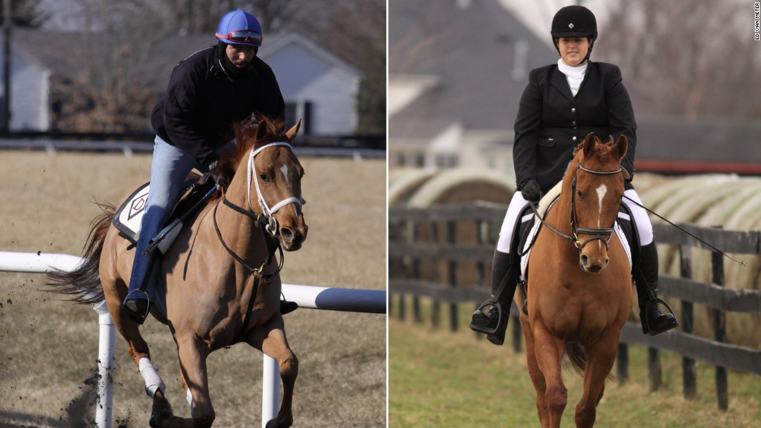Agent Alex, adopted in 2012 by Sarah McCullough from Second Stride, before adoption, left, and after adoption.  He is just starting his eventing career.
