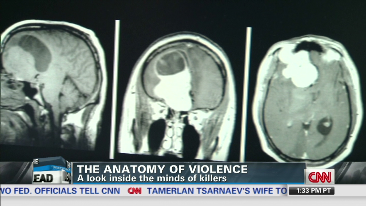 Expert: Violence and biology are linked - CNN Video