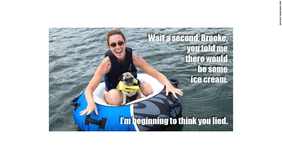 "CNN anchor Brooke Baldwin never owned a dog before she adopted her pug, Pugsley, who she also calls ""killer."" Not only does he think he's a person, she said, but his ""two favorite words are 'ice cream!'"""