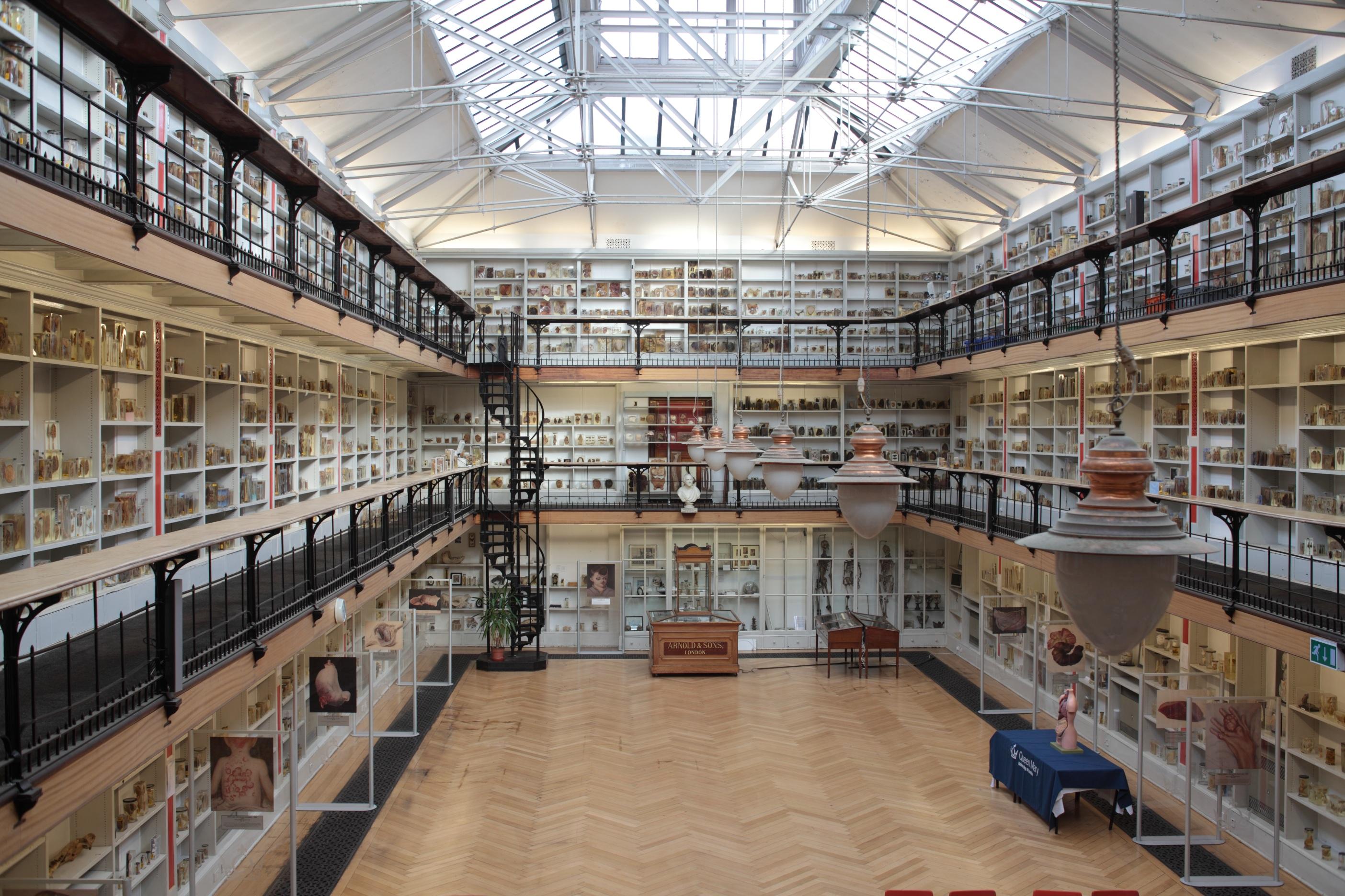 World\'s 10 weirdest medical museums   CNN Travel