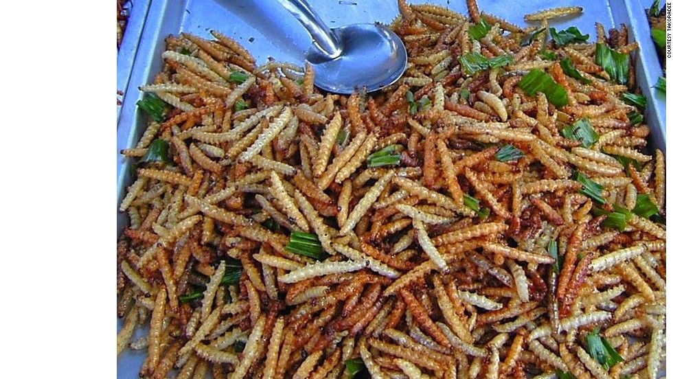 Image result for eating insects in thailand