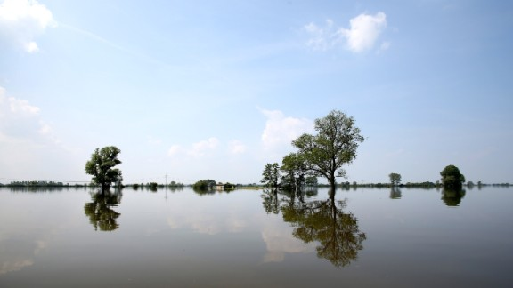 Trees are submerged in the waters of the Elbe River in Schoenhausen, Germany, on Wednesday, June 12. Heavy rain has left rivers swollen across Central Europe.