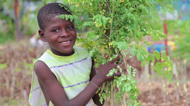 Haitian slum builds 'Garden of Eden'
