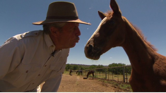 Gary Player: Why I love horses