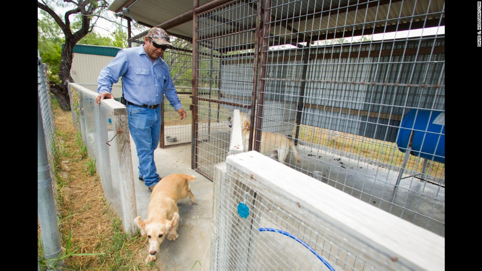 Despite being dozens of miles away from the border, ranchers near Falfurrias, Texas, must secure their property from those crossing the border illegally.  Here, Isaias Marquez cares for the dogs that patrol El Tule Ranch, where he works.