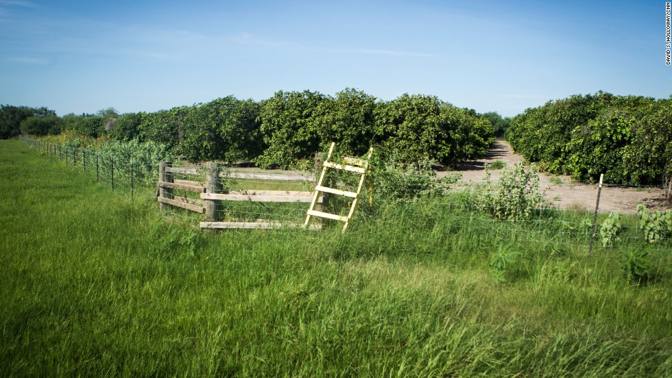 Ranchers and farmers often build ladders over their fences in hopes that migrants won't damage the fences when crossing.