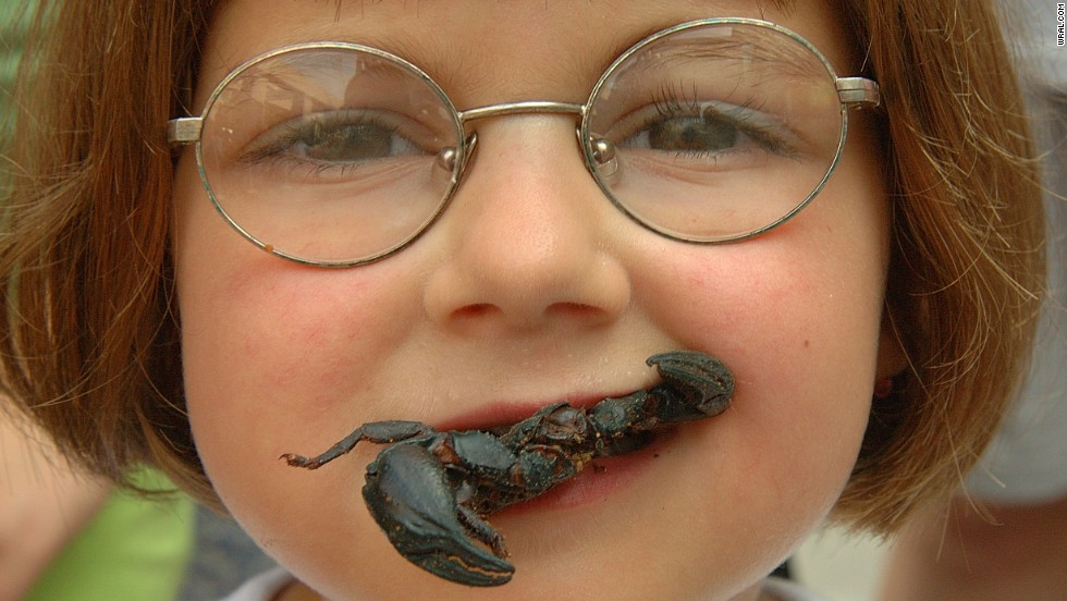 A one-day insect festival sponsored by the North Carolina Museum of Natural Sciences, Bugfest attracts 25,000 visitors a year and serves up a range of creepy, crawly dishes. This year's festival theme is scorpions.