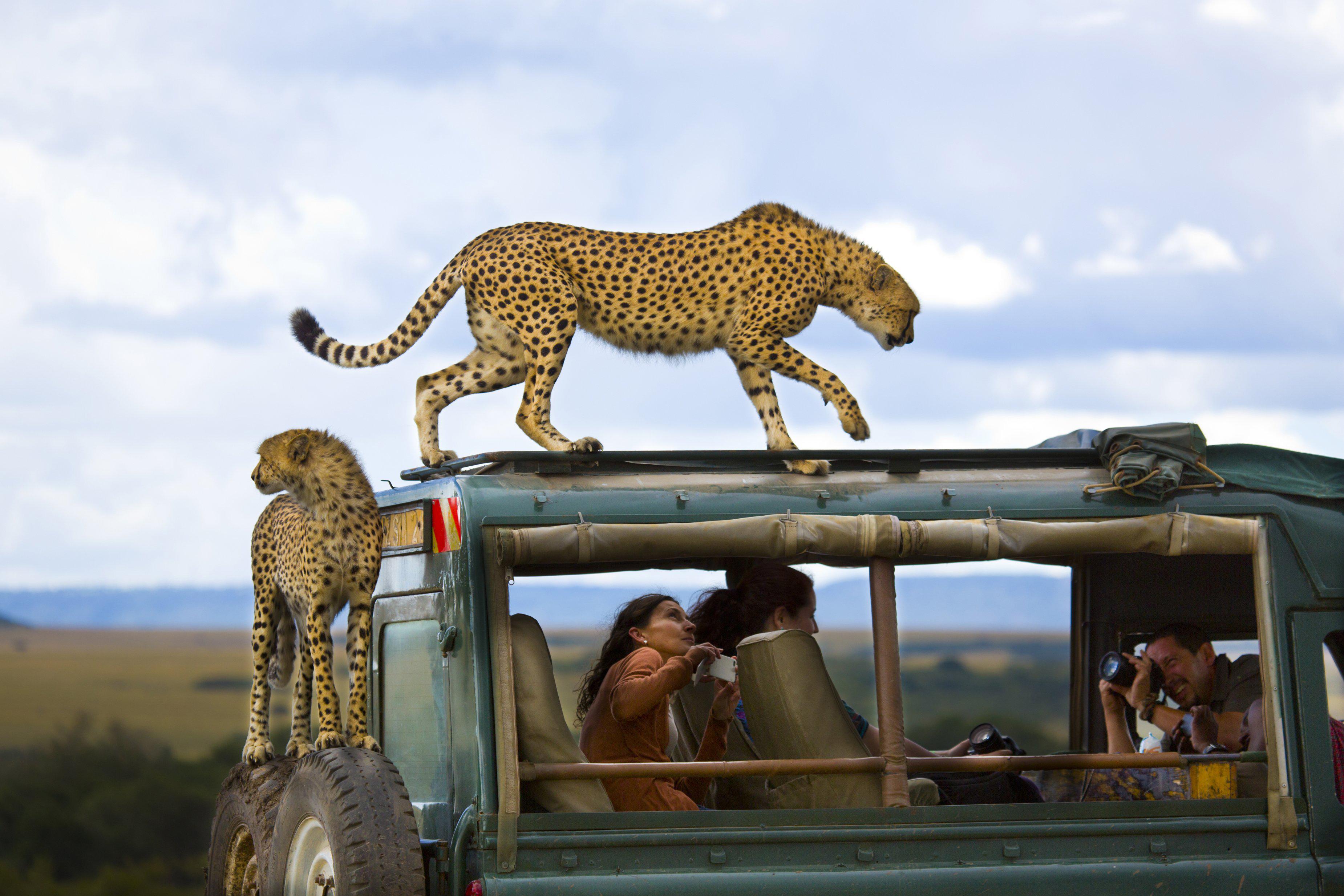 2013 National Geographic Traveler Photo Contest Winners