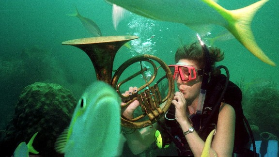 Swim with the fishes or sing with the fishes? Participants in the Underwater Music Festival in Crystal Beach, Florida play music while snorkeling.