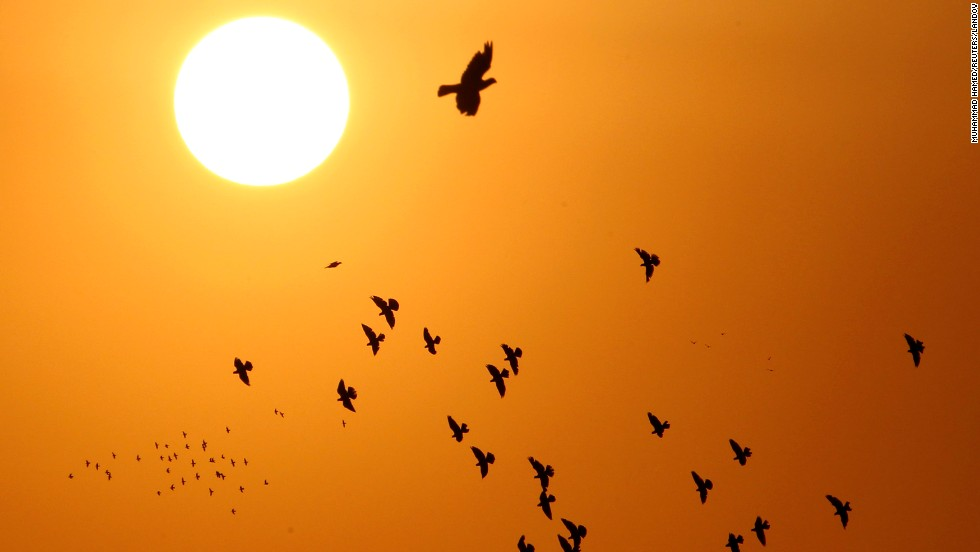 Doves, silhouetted against the rising sun, fly over Amman, Jordan, on September 5.
