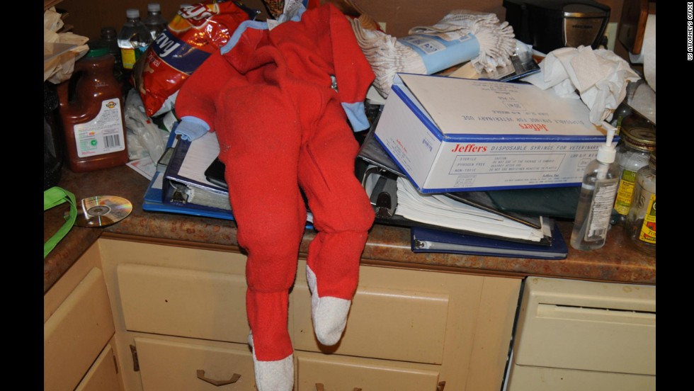 "A child's orange onesie sits on the counter in the home where a Boston-area man was allegedly planning to kidnap children, lock them up, rape and eat them. Geoffrey Portway, 40, went by the name ""Fat Longpig"" during his online chats which led Portway to be put on the radar screen of police."