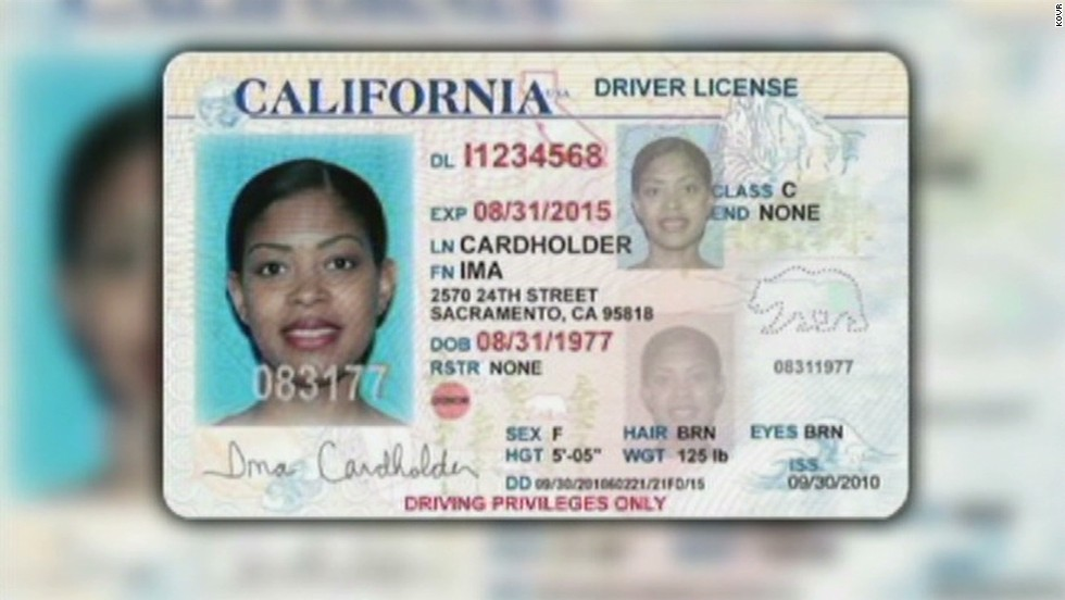 - For Cnn Workers Driver's Video Licenses Undocumented