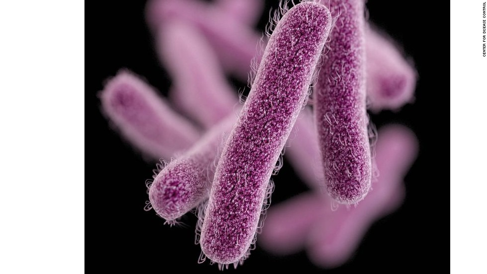 Shigella bacteria are showing resistance to fluoroquinolone and increasingly to second-line drugs used against them. They infect the intestine and cause diarrhea.