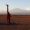 Africa yoga project Maasai headstand