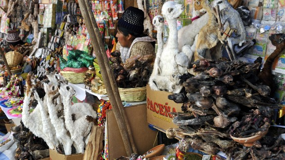 The Witch Market makes for a large tourist draw in La Paz, Bolivia, where local witches carry medicinal herbs and spell-making ingredients. Dried llama fetuses and toads are some of the items available for sale.