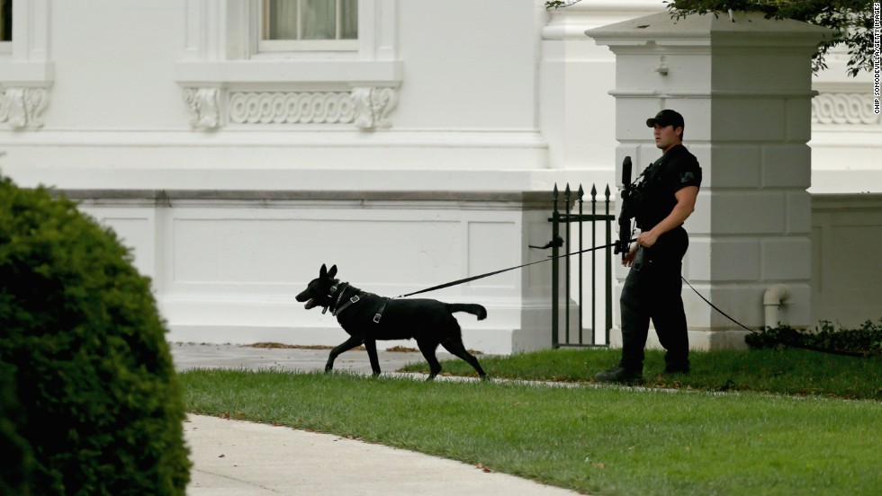 A member of the U.S. Secret Service counter-assault team patrols the grounds of the White House October 3 in Washington.