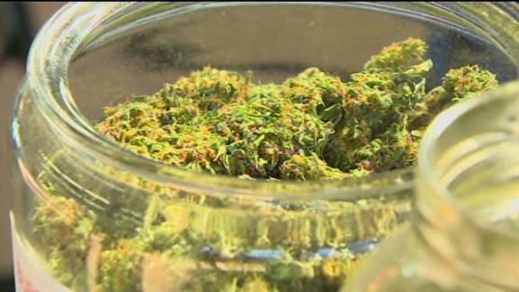 dnt seattle cannabis farm_00004411.jpg