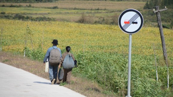 A woman and a man walking by the side of the road lined with cornfields.
