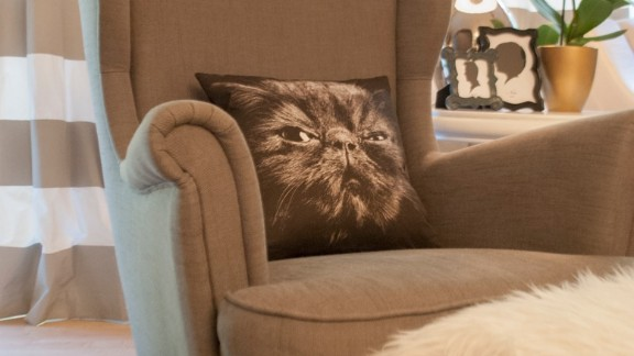 """<a href=""""http://cuckoo4design.blogspot.com/2013/08/i-found-it-and-simple-giveaway.html"""" target=""""_blank"""" target=""""_blank"""">Throw pillows</a> printed with the heads of a <a href=""""http://cuckoo4design.blogspot.com/2013/09/getting-ready-for-fall-and-halloween.html"""" target=""""_blank"""" target=""""_blank"""">raven, a deer and a cat,</a> seen here, festoon Konya's living room."""