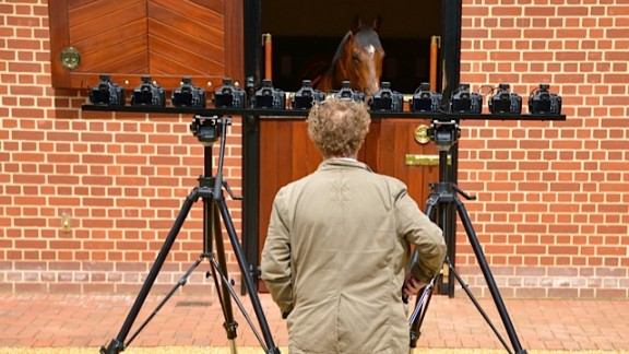 Frankel's energy and effervescence made him a difficult subject, with Levine eventually having to shoot the horse inside the stables. He used multiple cameras to capture a complete image of the super stallion.