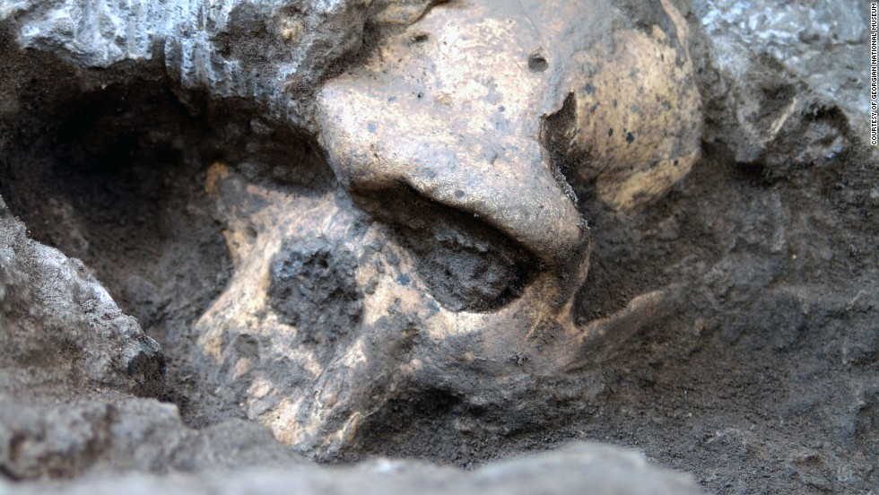 "Scientists found the <a href=""http://www.cnn.com/2013/10/17/world/europe/ancient-skull-human-evolution/"" target=""_blank"">most complete skull of an early member of the Homo genus</a>, and proposed with it some controversial ideas about the ancient human family tree."