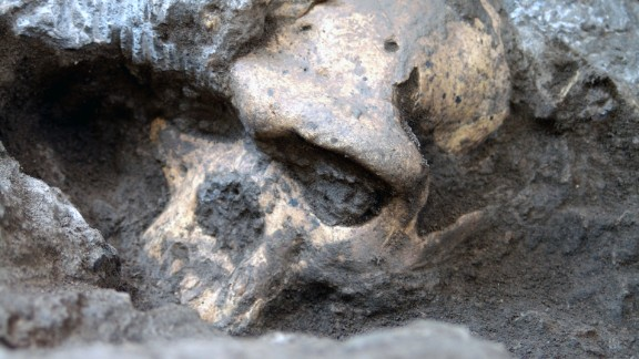 Scientists found the most complete skull of an early member of the Homo genus, and proposed with it some controversial ideas about the ancient human family tree.