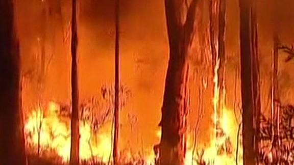 bpr australia bushfires rogers_00021924.jpg