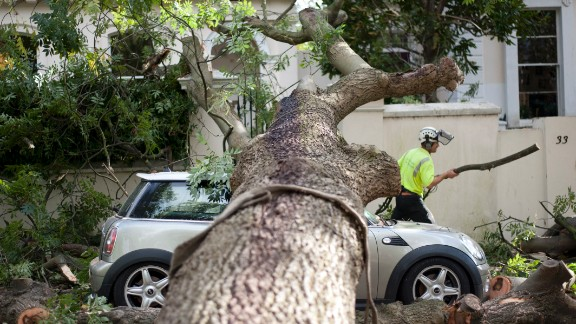 A contractor works on clearing the debris after a tree fell on car in London on Monday.