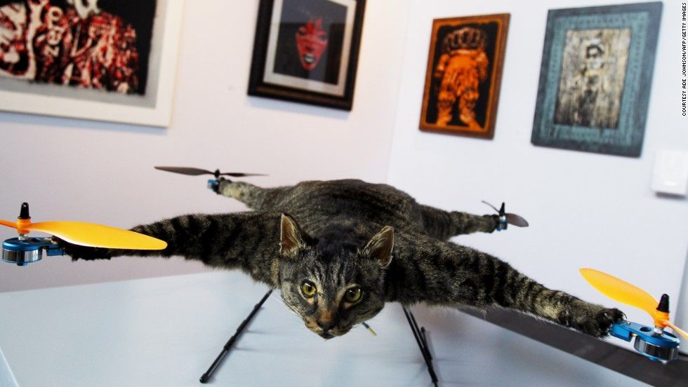 Drone Stuffed Cat Art Orville Is A Flying Helicopter Made By Dutch