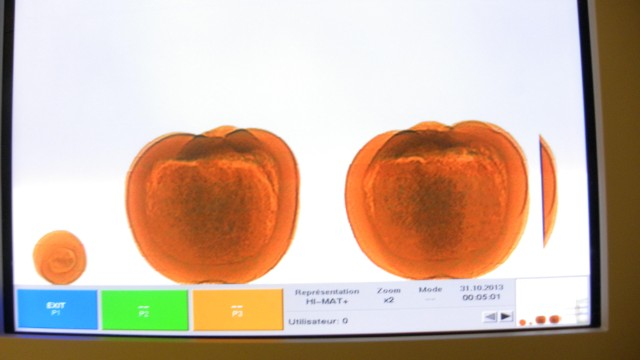 That's an x-ray of three cocaine-filled pumpkins, according to Canadian officials.