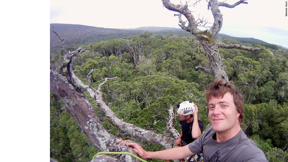 Wiles and Bristow enjoying the views from the tallest yellowwood tree in Eastern Cape.