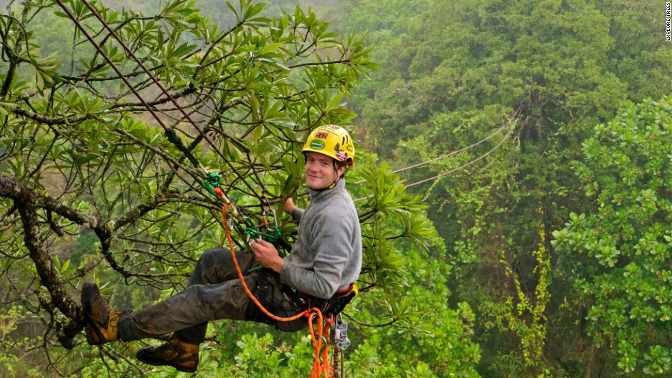 "Launched by David Wiles (pictured), the <a href=""http://exploretrees.com"" target=""_blank"">""Explore Trees""</a> project is aiming to help highlight the need to preserve South Africa's spectacular trees."