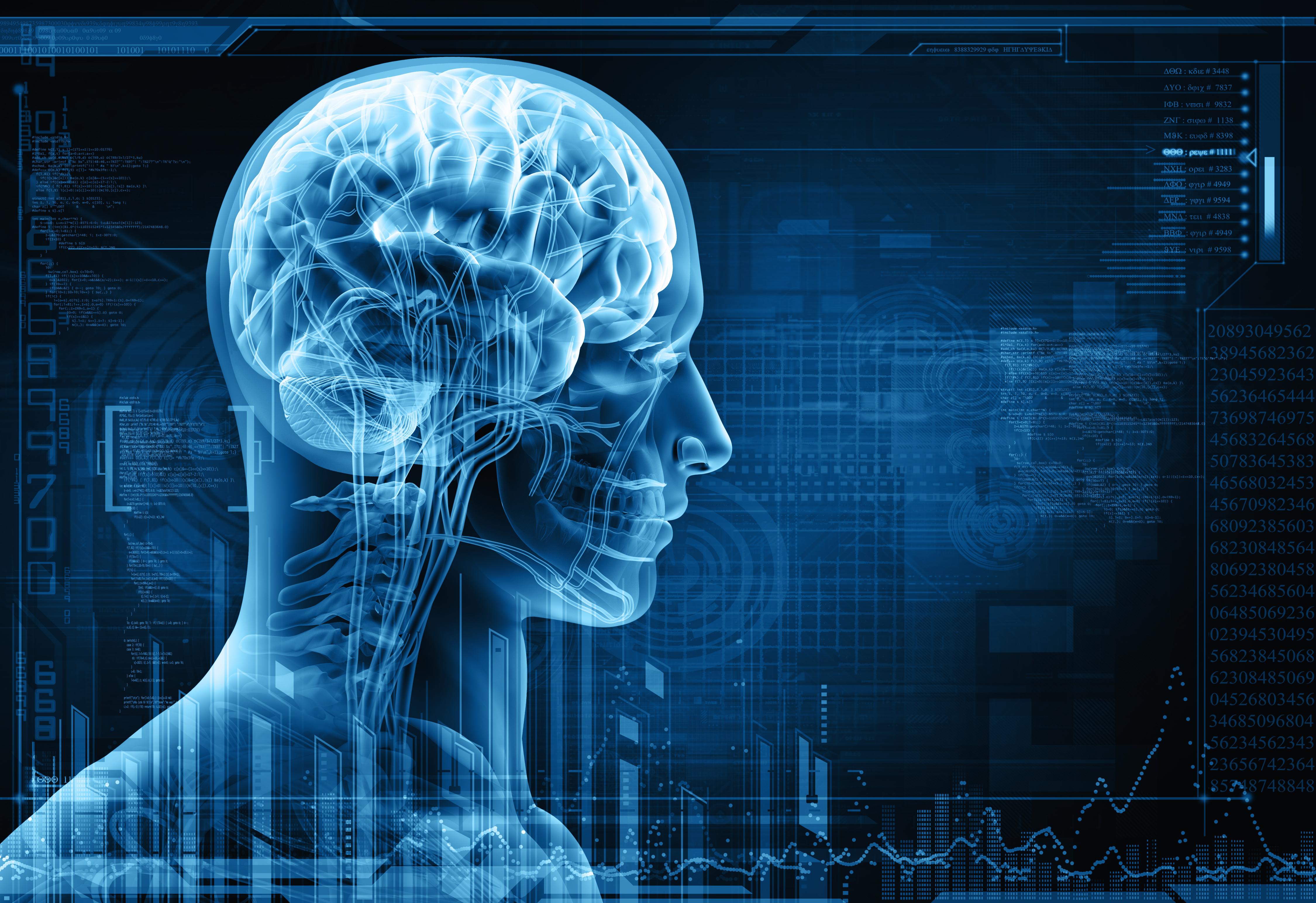 Risultato immagini per brain memory public domain