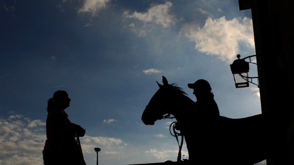 Tattersalls takes a 5% cut from each sale at its auction.