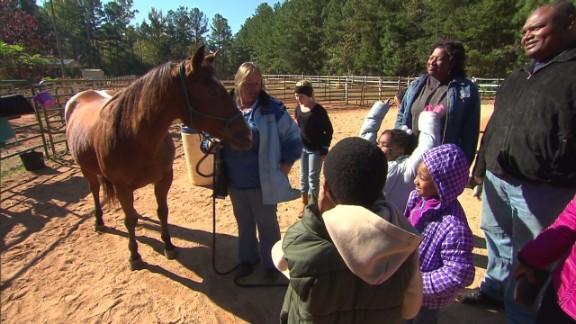 azuz horses veterans_00002621.jpg