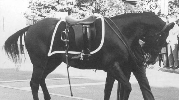 tsr pkg moos jfk riderless horse_00005714.jpg