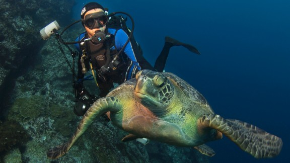 Formerly an academic, Enric Sala is National Geographic's explorer-in-residence with the mission of trying to save the world's oceans.