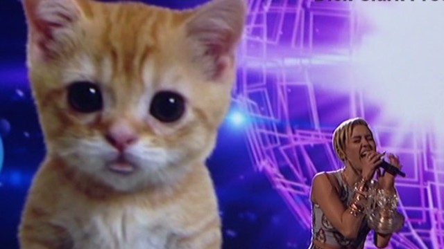 Miley Cyrus sings with lip-synching cat