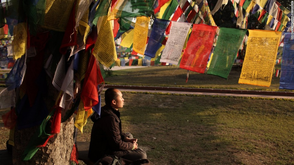 "A pilgrim meditates at a sacred ""Bodhi tree"" at the Sacred Garden of Lumbini. More than a million pilgrims visit Lumbini each year."