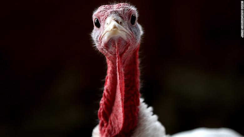 How Thanksgiving came to be a holiday