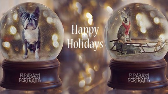Kapoor created digital images of people's pets in snow globes last year in order to raise money for the Alabama Boston Terrier Rescue group. Via her Facebook page, she raised more than $300 for the organization last year. She will be creating the snow globe images again this year.