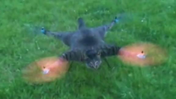 pkg lighter side of drones moos tsr_00022906.jpg