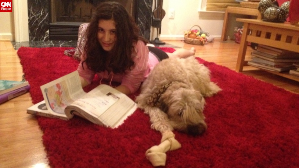 When Lisa Katzman's 17-year-old son and 13-year-old daughter are feeling stressed, one of the things the Chantilly, Virginia, mom does is encourage them to hang out with Ted, their wheaten terrier, especially while doing homework.