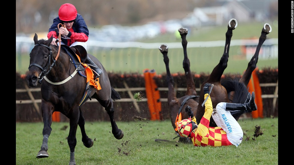 Ifandbutwhynot and Timmy Murphy fall during the QTS Scottish Champion Hurdle Race on April 20 in Ayr, Scotland. The horse and its rider both survived and raced again.