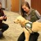 Emory therapy dog 7