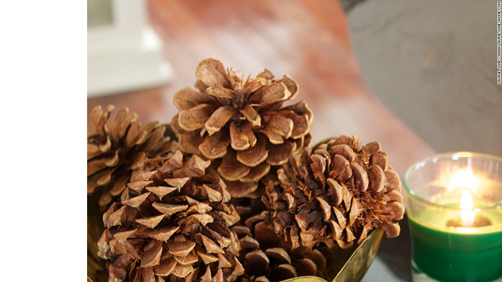 Even a small brass bowl full of pinecones helps reinforce Jones' woodland decor.