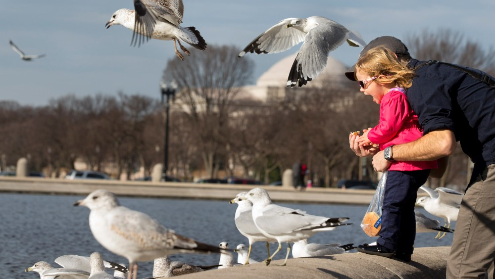 Allegra Michaels, 2, with her father Dave Michaels at the Capitol Reflecting Pool in Washington, screams with delight as they enjoy an unseasonably warm day on December 21.